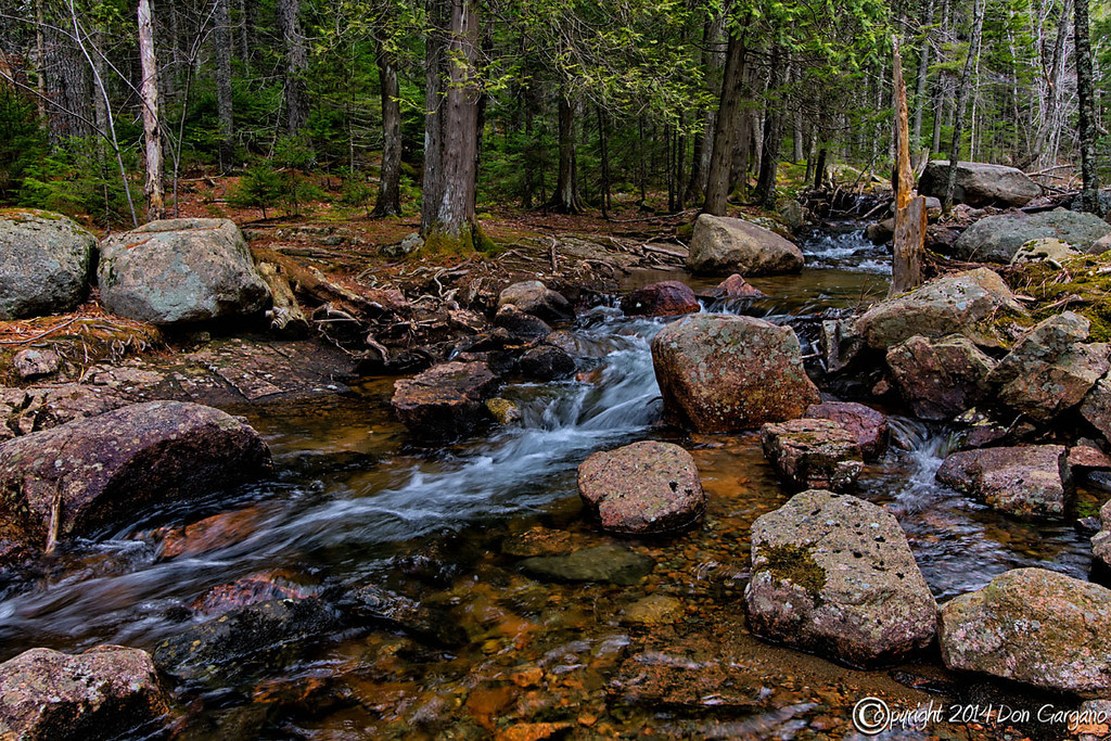 IMAGE: http://dongarganophotography.smugmug.com/2014-Photos/Maine/Acadia-National-Park/i-xHsgN2G/0/XL/Jordan%20Stream%3D04-30-01cr%20-XL.jpg
