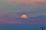 Sturgeon Full Moon