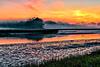 Salt Marsh Dawn